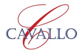 Mental Skills Workshop for Cavallo Stables